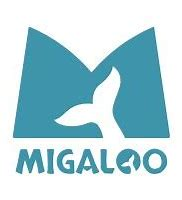 Logo Team Migaloo